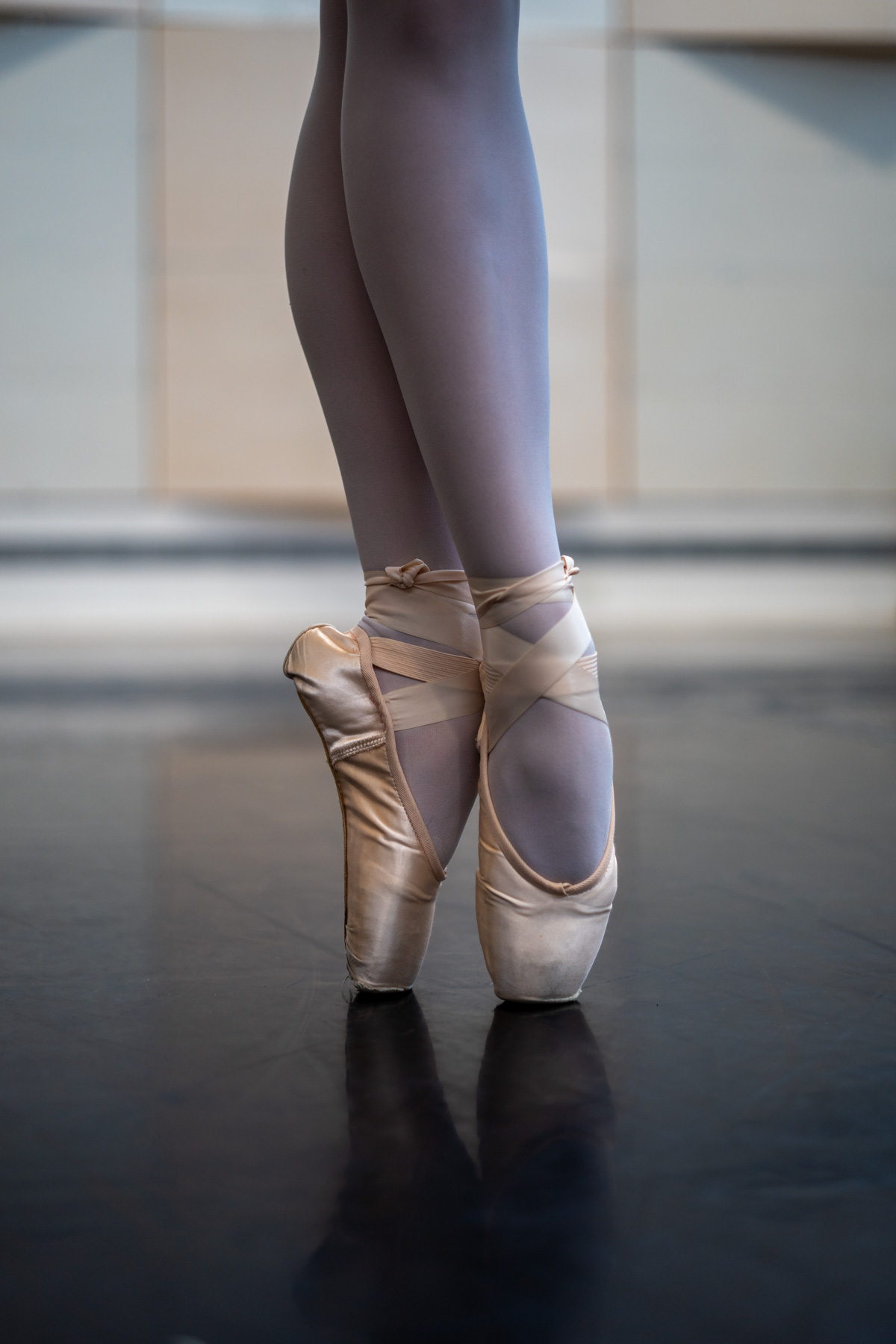 Den Danske Balletpris